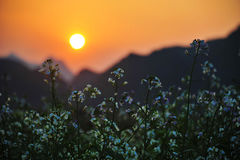 Заходящее солнце, Юньнань, Китай стоковое фото rf