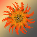 Зацветая кактус бесплатная иллюстрация