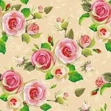 Зацветая картина роз безшовная Иллюстрация штока