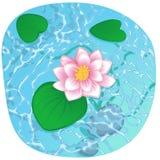 Зацветая лотос на сияющей воде Иллюстрация штока