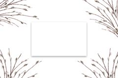 Зацветая стержни дерева на белой предпосылке Поздравительная открытка шаблона или знамя рекламировать Открытый космос в рамке для иллюстрация штока