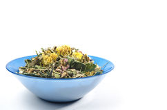Зацветая цветки высушенные sally Традиционный русский чай Стоковая Фотография
