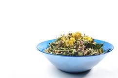 Зацветая цветки высушенные sally Традиционный русский чай Стоковые Фотографии RF