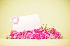 зацветая цветки гвоздики с пустой белой карточкой Стоковые Изображения RF