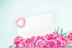 зацветая цветки гвоздики с пустой белой карточкой Стоковые Изображения