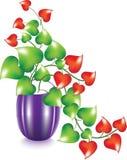 зацветите ваза сердца Стоковые Изображения