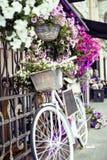 Зацветите в корзине винтажного велосипеда на винтажной деревянной стене дома, кафе улицы лета Стоковые Изображения RF