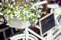 Зацветите в корзине винтажного велосипеда на винтажной деревянной стене дома, кафе улицы лета Стоковые Фотографии RF