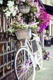 Зацветите в корзине винтажного велосипеда на винтажной деревянной стене дома, кафе улицы лета Стоковая Фотография
