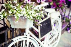 Зацветите в корзине винтажного велосипеда на винтажной деревянной стене дома Стоковое Изображение