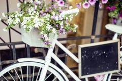 Зацветите в корзине винтажного велосипеда на винтажной деревянной стене дома, кафе улицы лета Стоковая Фотография RF