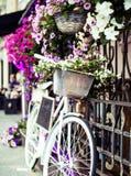 Зацветите в корзине винтажного велосипеда на винтажной деревянной стене дома Стоковое Изображение RF
