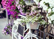Зацветите в корзине винтажного велосипеда на винтажной деревянной стене дома, конце кафа улицы лета вверх по Европе Стоковая Фотография RF