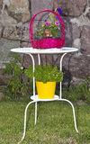 Зацветите корзина Стоковая Фотография