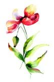 зацветите красный цвет Стоковые Изображения RF