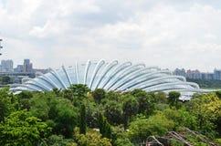 Зацветите купол на садах заливом в Сингапуре Стоковые Фотографии RF