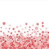 зацветите много красный цвет Стоковое Изображение