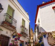 Зацветите Улица Torre del Aliminar Башня Mezquita Cordoba Испания Стоковое Фото