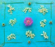 Зацветите цветки cornflower белые с elderberry и клевером на старой голубой предпосылке grunge Стоковые Изображения