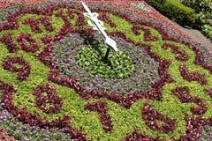 Зацветите часы в парке на часах ` 12 o Стоковые Фотографии RF
