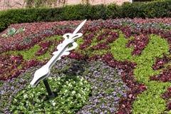 Зацветите часы в парке на часах ` 12 o Стоковое Изображение