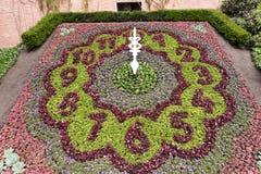 Зацветите часы в парке на часах ` 12 o Стоковые Фото