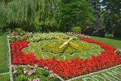 Зацветите часы в парке, Podebrady, чехии Стоковое Фото