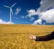 Зачатие экологичности стоковые фотографии rf