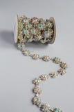 Зашейте оплетку в серебряном цвете с ясный лежать камней стоковая фотография rf