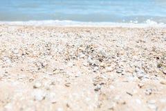 Зашкурьте конец-вверх, на фоне запачканных голубых моря или океана, пустой пляж, солнечный день, пляж с раковинами Стоковое Изображение RF
