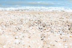 Зашкурьте конец-вверх, на фоне запачканных голубых моря или океана, пустой пляж, солнечный день, пляж с раковинами Стоковая Фотография