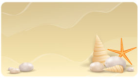 Зашкурьте предпосылку с камнями камешка, seashells и  Стоковое Изображение