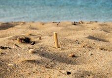 Зашкурьте пляж лета с раковинами моря и море на предпосылке Стоковая Фотография RF