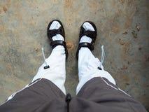 Защитите носок пиявки стоковая фотография