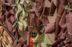 Защитная воинская маскировочная сетка 3-цвета Стоковое Изображение