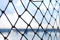 Защитная сетка пеньки стоковые фотографии rf