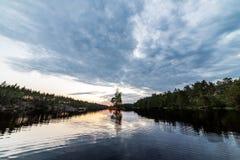за валами 2 захода солнца лета сосенки стоящими Стоковое Изображение RF