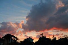 за валами 2 захода солнца лета сосенки стоящими Стоковое Фото