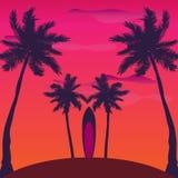 за валами 2 захода солнца лета сосенки стоящими Стоковые Фото