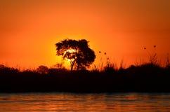 за валом захода солнца Стоковое Изображение RF