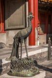Задворк дворца Пекина имперская стоковые изображения