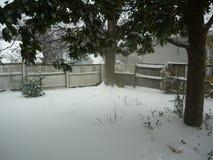 Задворк Snowy Стоковое Фото