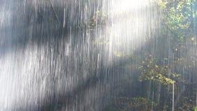 За водопадом сток-видео
