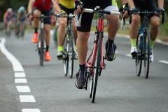 Задействуя спортсмены велосипедиста конкуренции ехать гонка Стоковые Фотографии RF