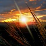 залив над заходом солнца Стоковые Изображения RF