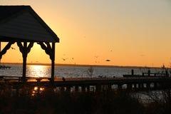 залив над заходом солнца Стоковые Изображения