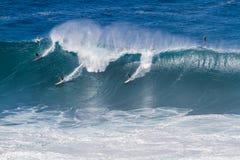 Залив Оаху Гаваи Waimea, серферы едет большая волна Стоковая Фотография RF