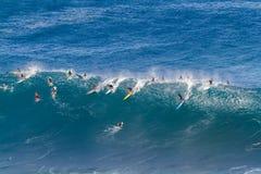 Залив Оаху Гаваи Waimea, серферы едет большая волна Стоковые Фото