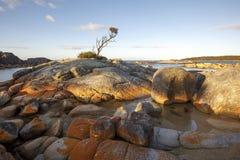 Залив огней, Австралия Тасмания Стоковые Фото