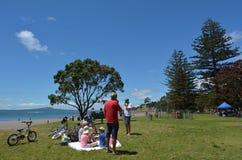 Залив Окленд Новая Зеландия коричневых цветов Стоковое фото RF
